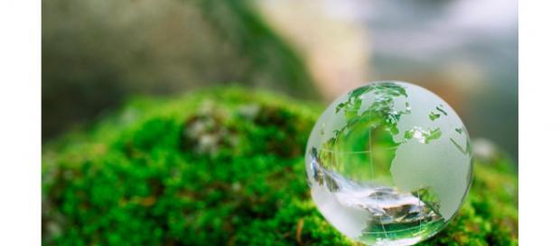 El mercado internacional de bioplásticos crecerá un 20% en 5 años ... - interempresas.net