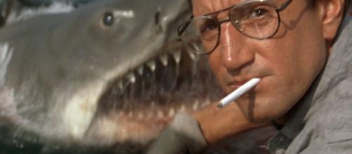 La película Tiburón - el Final de - elfinalde.com