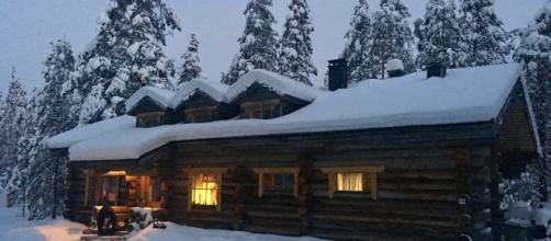Lapponia Finlandia Cottage costruito con tronchi di alberi morti in piedi