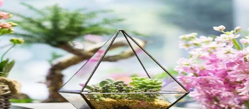 Tu consejo semanal géminis: crea un espacio de sostenedores de plantas