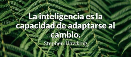 Un hombre inteligente comete un error, aprende de él y nunca ... - brainyquote.com