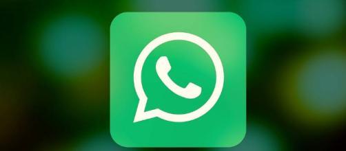 WhatsApp, come nascondere le spunte blu: in arrivo l'aggiornamento ... - intelligonews.it