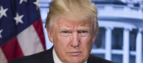 In alto, il presidente degli Stati Uniti, Donald Trump