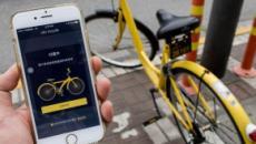 Tres empresas te dicen bicicletea mientras vez tu teléfono inteligente