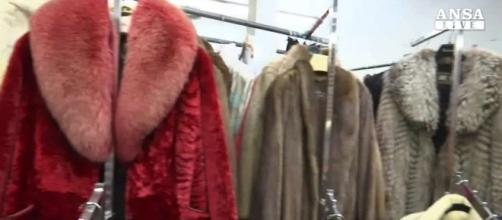 San Francisco vieta la vendita di pellicce dal 2019