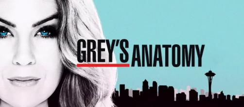 watch Grey's Anatomy temporada 14.