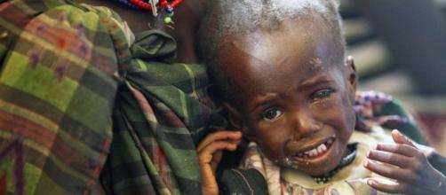 El hambre agudo, un problema que no para de crecer