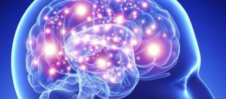 Consejos neurocientíficos para mantener joven el cerebro.