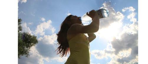 A água é o componente essencial da vida