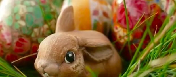 A bunny rabbit is the most recognized animal representing the Easter holiday- Image credit - [b/60/YouTube]