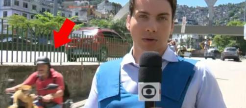 Gato motoqueiro aparece em link ao vivo da Globo. (Foto: Reprodução/TV Globo)