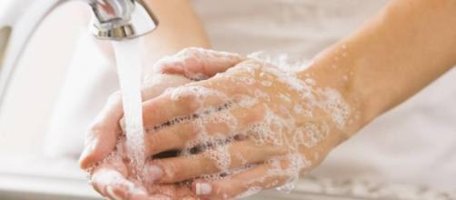 Estudio: Lavarse las manos puede evitar el 20% de las infecciones ... - publimetro.cl