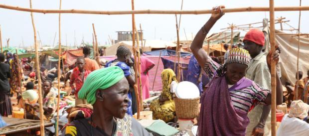 Hambre y seguridad alimentaria - Desarrollo Sostenible - un.org