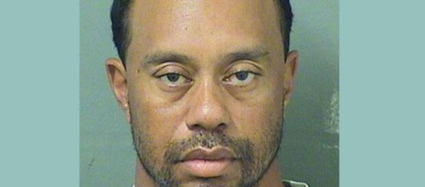 Tiger Woods' fall from grace recounted in new book. [Image Credit: Palm Beach Sheriff Depart.]