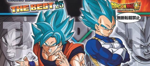 Se anuncia el primer Spin-Off de Dragon Ball Super