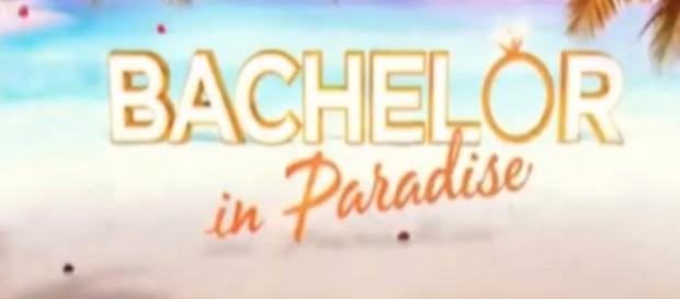 Bachelor in Paradise Australia - Image credit - The Bachelor Worldwide   YouTube