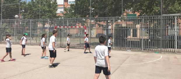 Diversión, convivencia y deporte en primaria - Colegio Alba - colegioalba.com