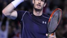 ATP 's-Hertogenbosch pays hefty appearance fee to land Andy Murray