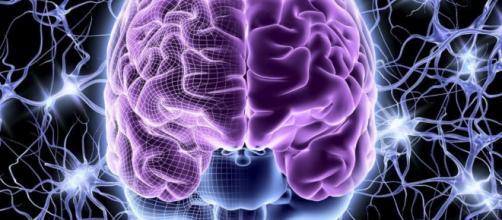 o mito: ¿Sólo usamos el 10% de nuestro cerebro? - lavanguardia.com