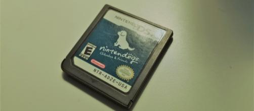 my first and only edition of 'Nintendogs' - image via me