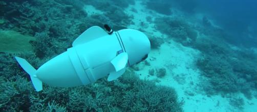 El pez robot que explora el fondo del océano.