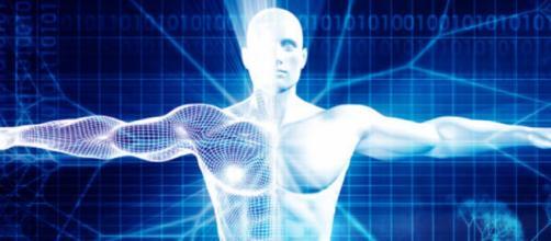 Scoperto un nuovo organo del corpo umano: dove si trova e a cosa serve