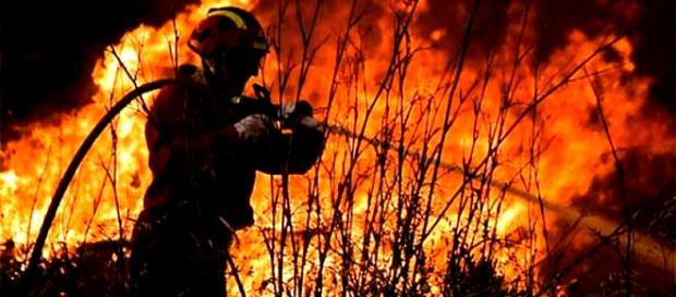 Durante o ano de 2017 foram registadas 17.556 ocorrências de incêndios florestais