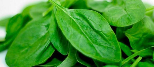 La espinaca es una buena fuente de Vitamina K, la cual, funciona en la retención de calcio en la matriz ósea