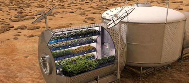 NASA plans to grow food on future spacecraft and on other planets (Image credit - NASA, Wikimedia Commons)