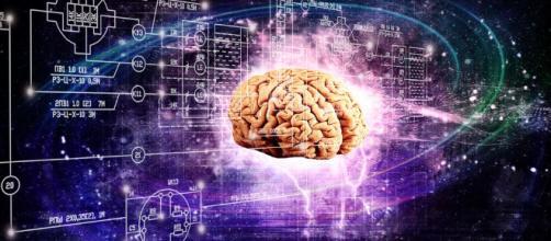 Conectan un cerebro humano a internet en tiempo real – Asombrosamente - asombrosamente.co