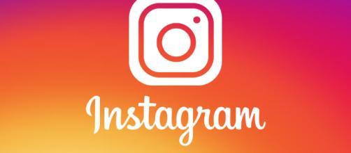 Incorporaron los GIFs a las Stories de Instagram | La Jornada Web - com.ar
