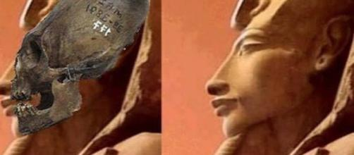 Glli alieni erano ibridi umano-alieni?