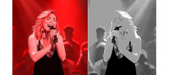 Canção portuguesa 'O Jardim' está entre as favoritas à vitória