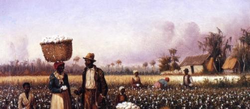 trabalhadores em algodão campo com cão, óleo sobre a tela por ... - wahooart.com