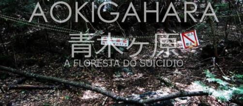 Aokigahara - A floresta do suicídio 1