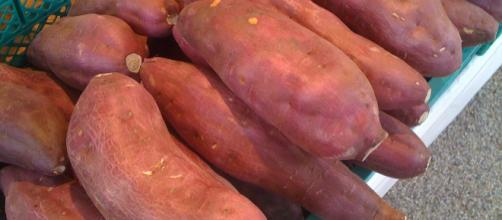 Sweet potato -- kimubert/Flickr