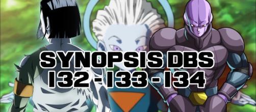 DBS 132 - 133 - 132, Synopsis des épisodes !