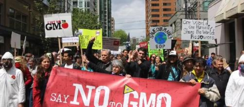 Saying No to GMO - Image credit - Natural News | Vimeo