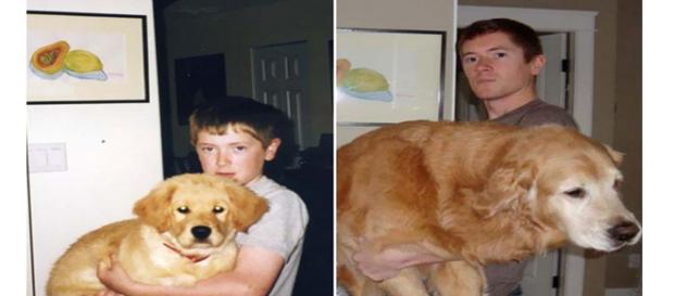 O tempo passou e eles cresceram.
