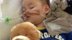 Per il piccolo Alfie nessuna speranza, il giudice: 'Ulteriori cure sono inutili'
