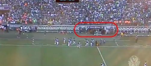 Palmeiras divulga vídeo e promete ir até às últimas consequências