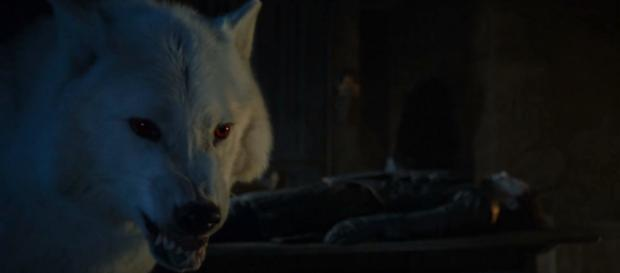 Juego de Tronos: ¿qué posibilidad tienen Nymeria y Fantasma de salir con vida?