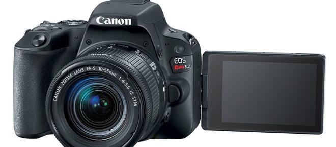 Canon lança modelo especial para fotógrafos iniciantes; conheça a EOS Rebel SL2