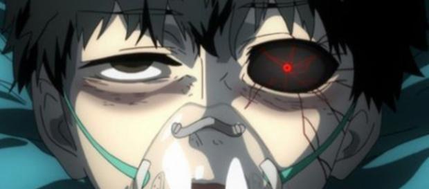 Protagonist Ken Kaneki wacht nach seinem Unfall als Ghul wieder auf - projectfandom.com