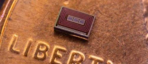 Un sensor inyectable para controlar el nivel del alcohol