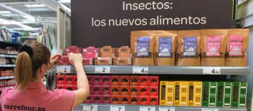 Carrefour comienza a vender productos con insectos - Amenzing - amenzing.com