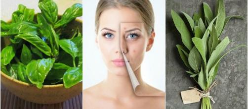 Hierbas que te ayudarán a combatir el acné de forma natural