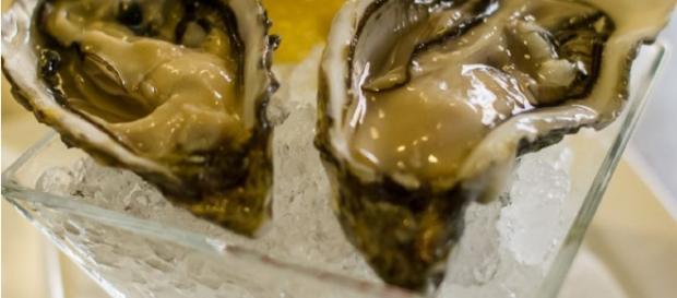 Allarme ostriche contaminate da parte del Ministero della Salute
