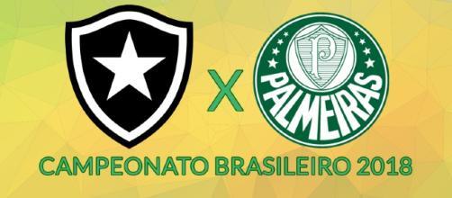 Botafogo x Palmeiras ao vivo nesta segunda