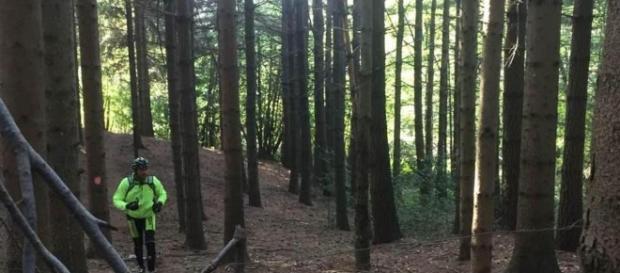 """""""trappole"""" per le mountain bike nei boschi di Pollino. foto - lastampa.it"""